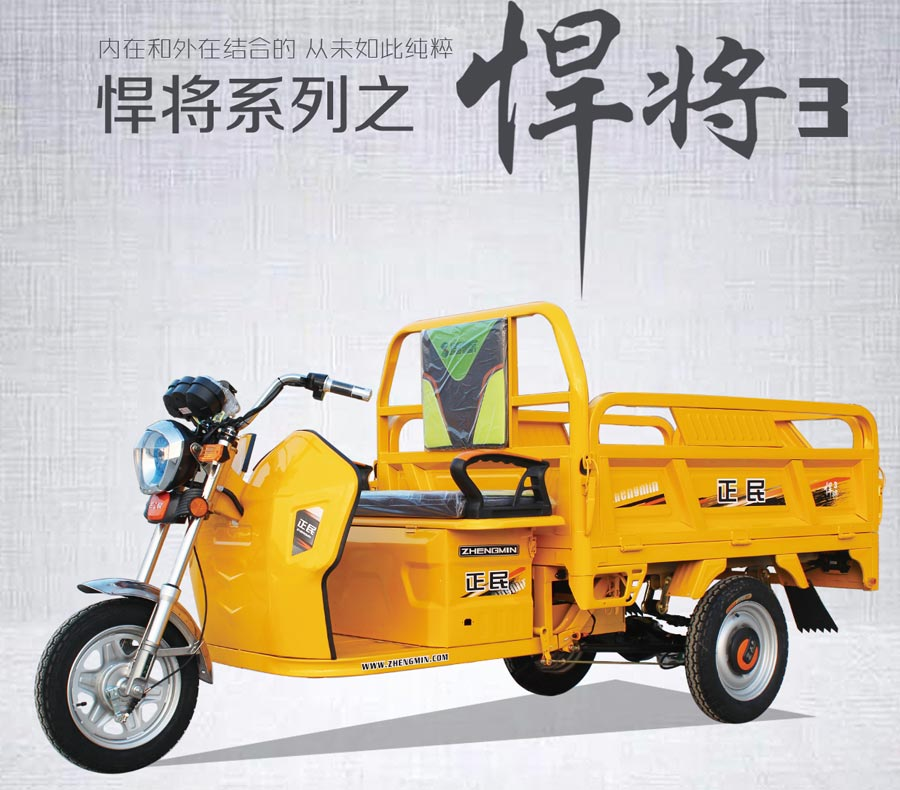 正民三輪車(che)-悍fang)3