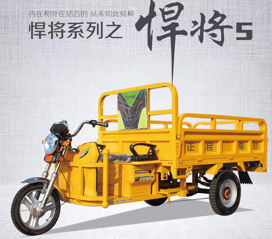 正民三輪車(che)-悍fang)5