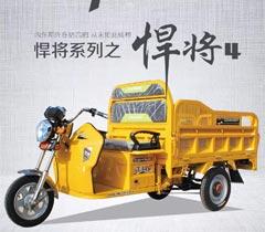 正民三輪車(che)-悍fang)4